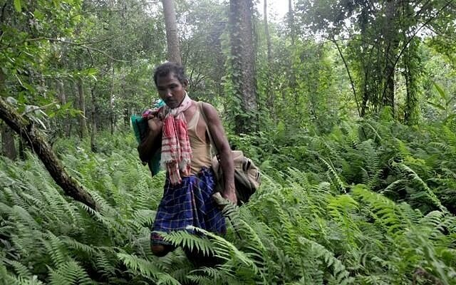 Jadav Molai Payeng, The Forest Man Image Source: The Alternative