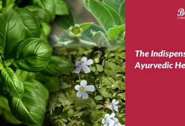 Essential Ayurvedic Herbs - Branolia Chemicals
