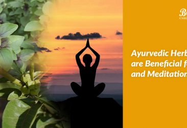 ayurvedic herbs for yoga