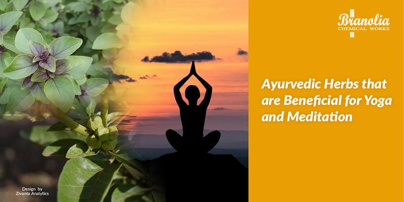 ayurvedic herbs for yoga